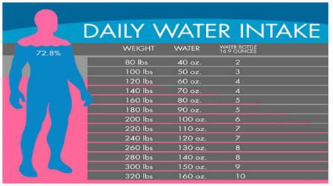 Daily Water Intake